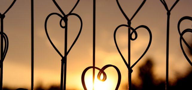 23/11: Al ZieleZingend houden we ons hart open en warm